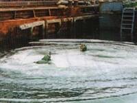 Боевые пловцы. Средства диверсий в подводном бою