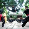 Школа Вьет Во Дао «Тхиен Дыонг»