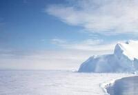 Школа выживания. Испытание Арктикой