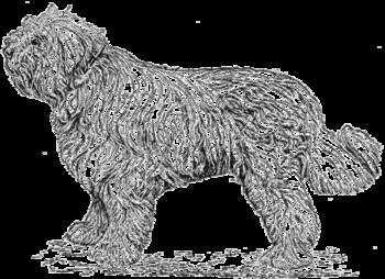 Породы собак